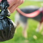 ASK EARTHA: Dog Poop and the Environment